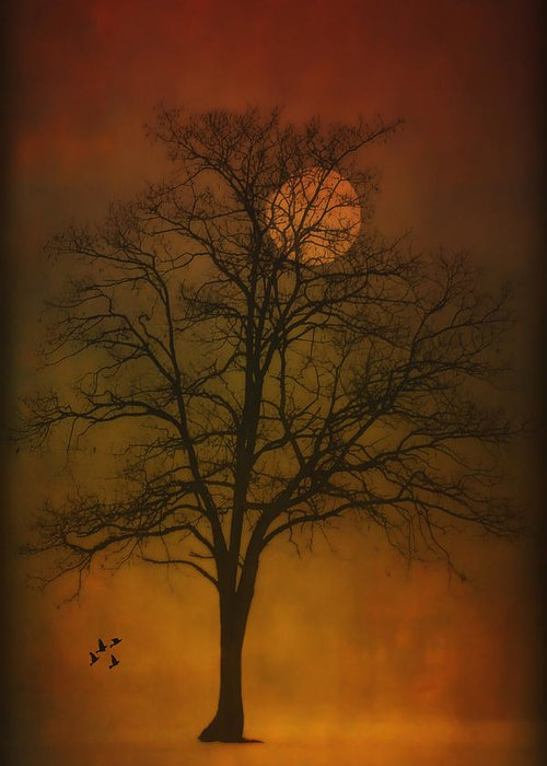 Landscape Greeting Card featuring the photograph One Lonely Tree by Tom York Images