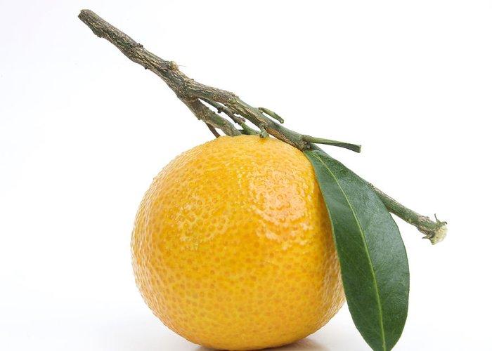 No People Greeting Card featuring the photograph Orange Satsuma by Bernard Jaubert