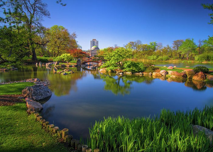 Japanese Garden Greeting Card featuring the photograph Osaka Garden Pond by Jonah Anderson