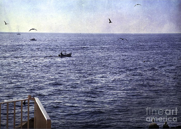 Sea Greeting Card featuring the photograph Out To Sea by Madeline Ellis