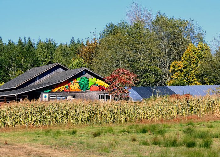 Raw Greeting Card featuring the photograph Painted Barn by Chris Anderson