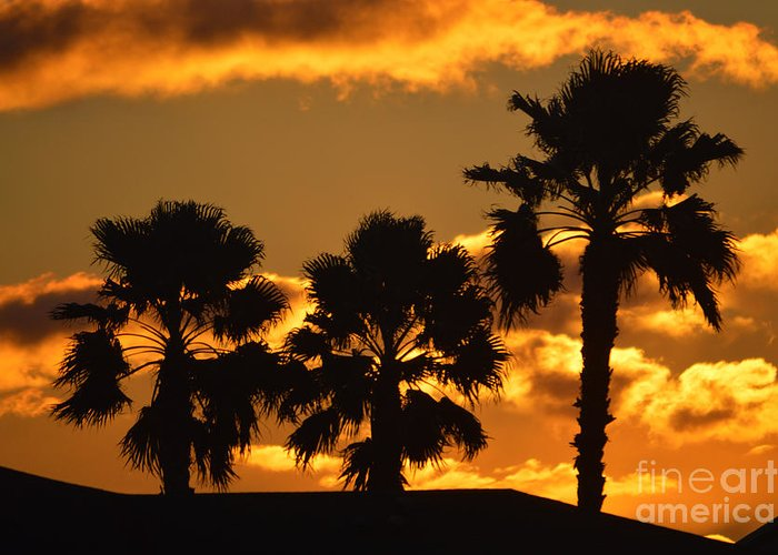 Sunrise Greeting Card featuring the photograph Palm Trees In Sunrise by Susanne Van Hulst