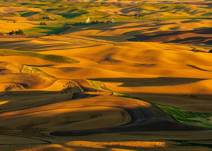 The Palouse Greeting Card featuring the photograph Palouse Shadow Play by Dan Mihai