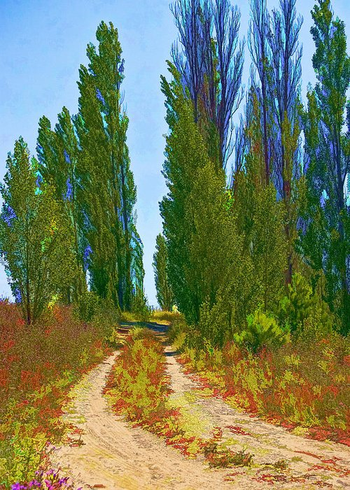 Art Greeting Card featuring the photograph Paradise Road by Randall Nyhof