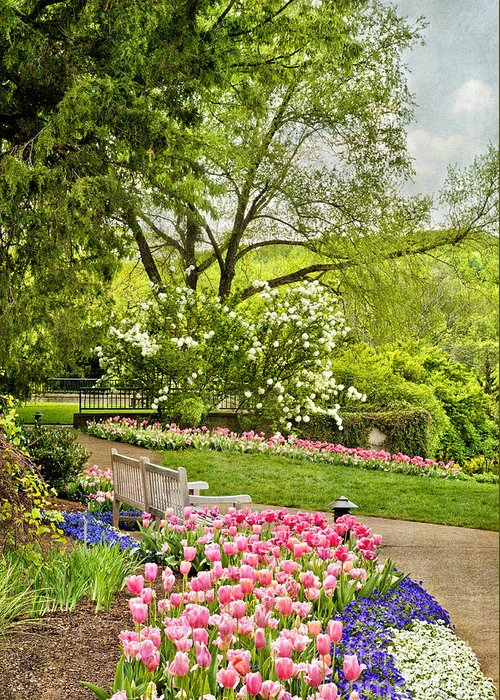 Spring Garden Greeting Card featuring the photograph Peaceful Spring Park by Cheryl Davis