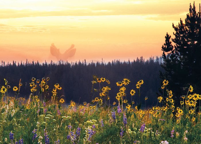 Deer Greeting Card featuring the photograph Phantom Deer by Dave Dilli