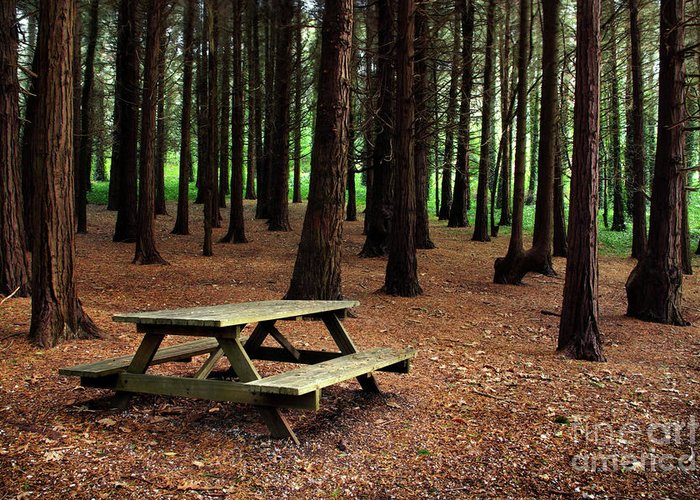 Autumn Greeting Card featuring the photograph Picnic Table by Carlos Caetano