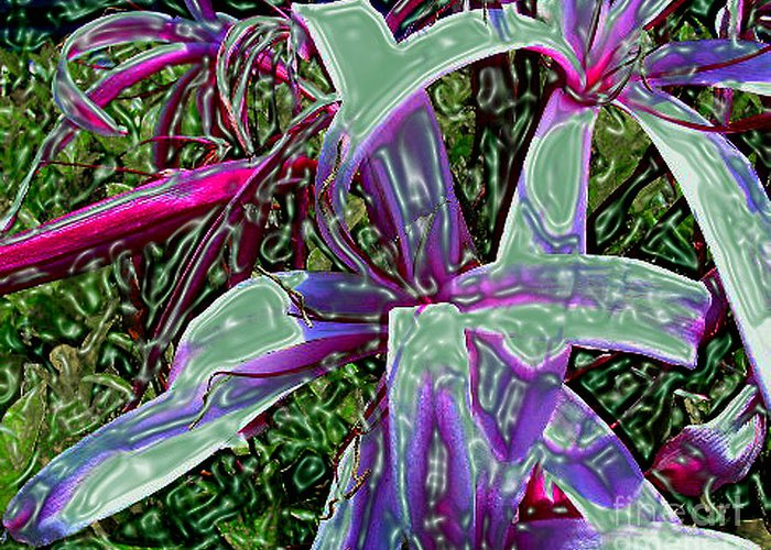 Flower Greeting Card featuring the photograph Plasticized Cape Lily Digital Art by Merton Allen