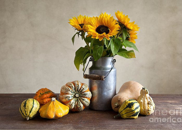 Autumn Greeting Card featuring the photograph Pumpkins And Sunflowers by Nailia Schwarz