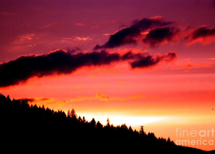 Sky Greeting Card featuring the photograph Purple Haze by Nick Gustafson