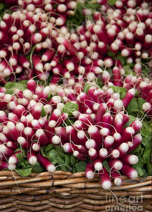 Agriculture Greeting Card featuring the photograph Radishes In A Basket by Jane Rix