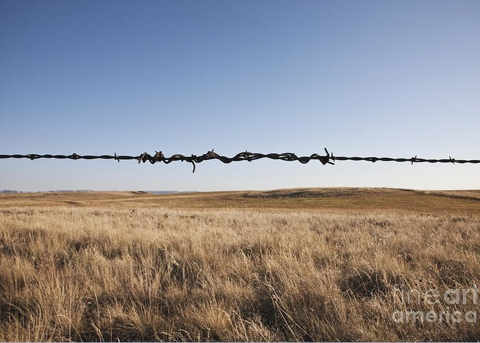Autumn Greeting Card featuring the photograph Repaired Strand Of Barbed Wire by Jetta Productions, Inc