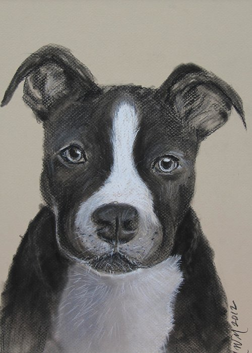 Pit Bull Greeting Card featuring the drawing Rescue Me by Michelle Wolff