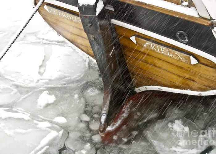 Europe Greeting Card featuring the photograph Resting In Ice by Heiko Koehrer-Wagner