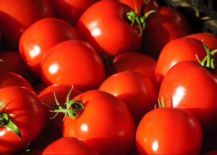 Harvest Greeting Card featuring the photograph Ripe Tomatoes by Connie Cooper-Edwards