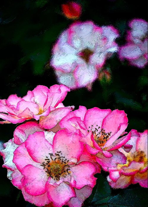 Floral Greeting Card featuring the photograph Rose 121 by Pamela Cooper