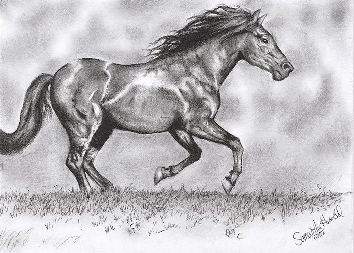 Horse Greeting Card featuring the drawing Running by Samantha Howell