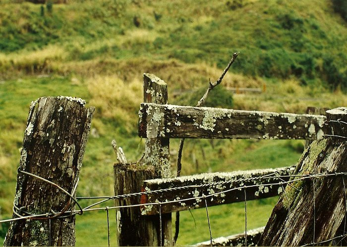Fence Greeting Card featuring the photograph Rustic Fence by Marilyn Wilson
