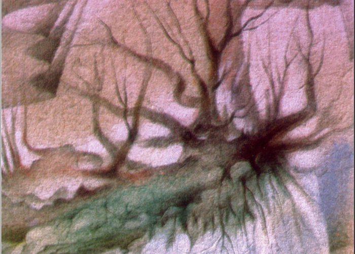 Hanging Roots Greeting Card featuring the drawing Sagada Hanging Roots 1982 by Glenn Bautista