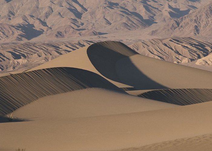 Sand Greeting Card featuring the photograph Sand Dunes In Death Valley by Marc Moritsch