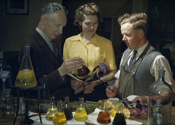 Indoors Greeting Card featuring the photograph Scientists Examine Results Of Tests by B. Anthony Stewart