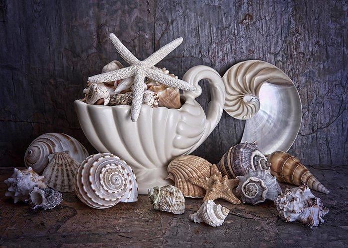 Beach Greeting Card featuring the photograph Seashells by Tom Mc Nemar