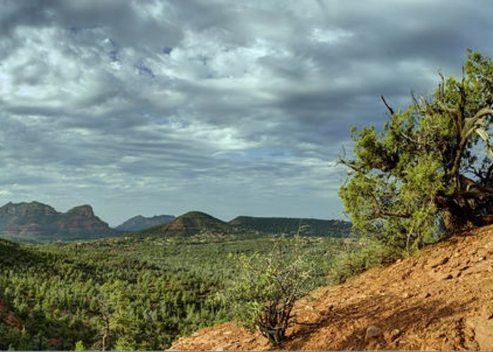 Sedona From The Top Of Jordan Trail Greeting Card featuring the digital art Sedona From The Top Of Jordan Trail by Dan Turner