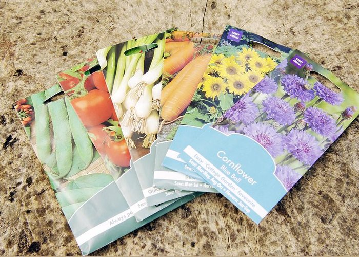 Wild Bean Greeting Card featuring the photograph Seed Packs by Johnny Greig