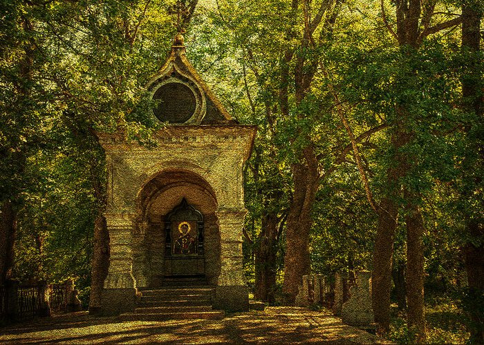 Chapel Greeting Card featuring the photograph Shaded Chapel. Golden Green Series by Jenny Rainbow