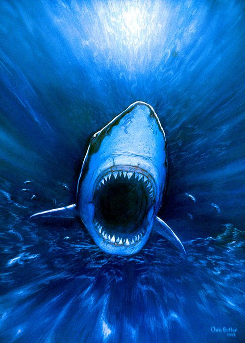Great White Shark Greeting Card featuring the photograph Shark Attack by Chris Butler