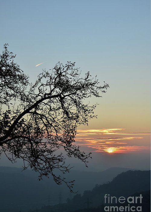 Photograph Greeting Card featuring the photograph Silhouette At Sunset by Bruno Santoro
