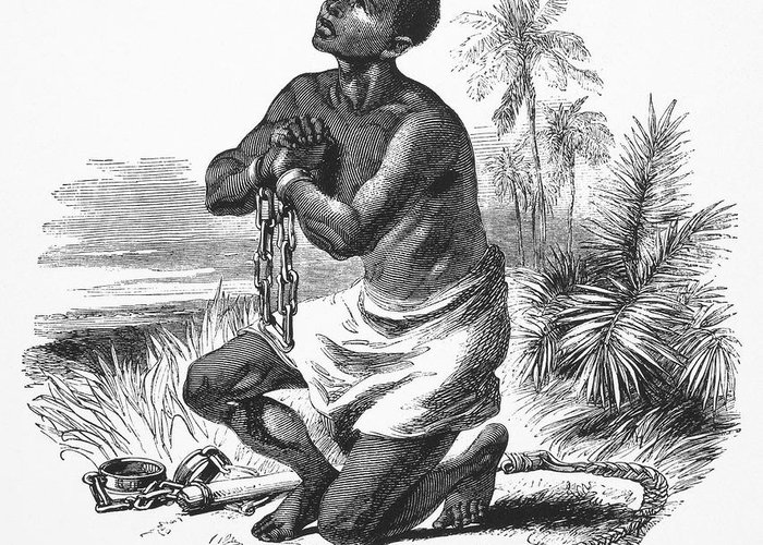 19th Century Greeting Card featuring the photograph Slavery: Abolition by Granger