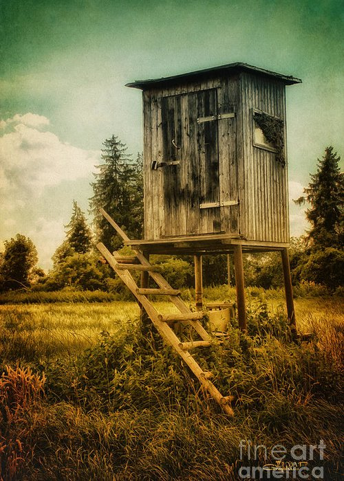Photo Greeting Card featuring the photograph Small Cabin With Legs by Jutta Maria Pusl