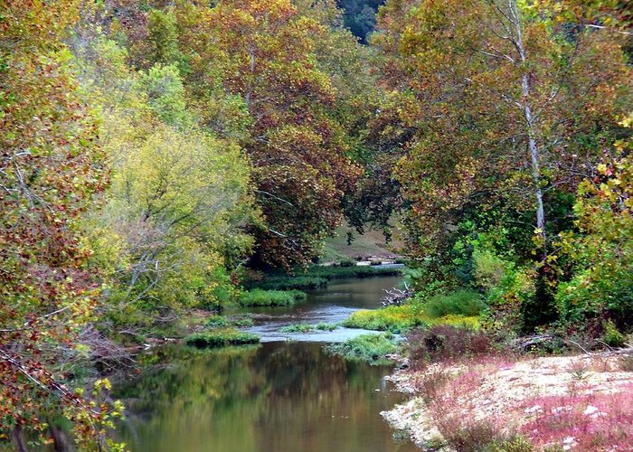 River Greeting Card featuring the photograph South Harpeth by Kay Sawyer