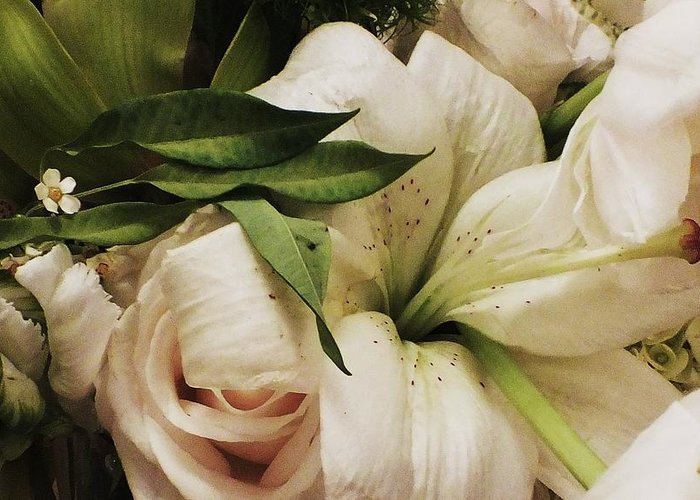 Lily Greeting Card featuring the photograph Spring Flowers by Anna Villarreal Garbis