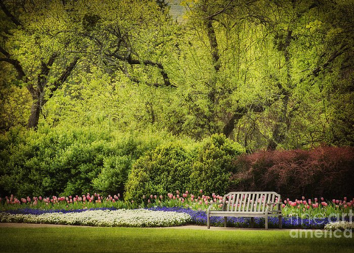 Spring Garden Greeting Card featuring the photograph Spring Garden by Cheryl Davis