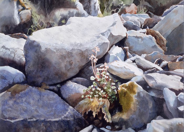 Rocks Greeting Card featuring the painting Summer Streambed by Sharon Freeman