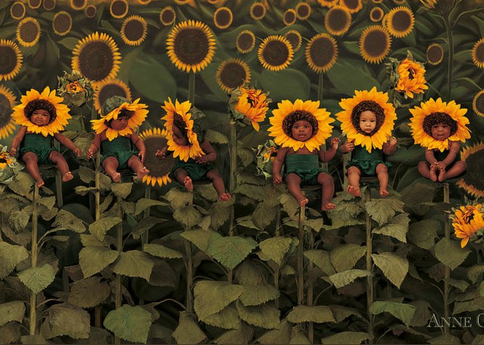 Sunflowers Greeting Card featuring the photograph Sunflowers by Anne Geddes