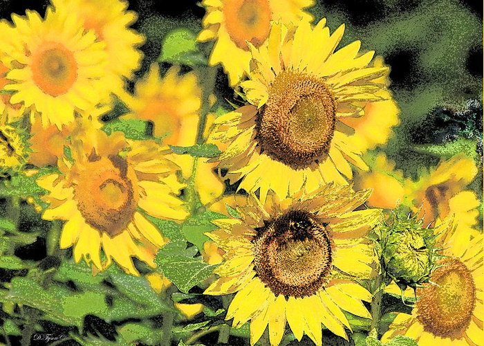 Yellow Greeting Card featuring the photograph Sunny Sunflowers by Diana Tyson