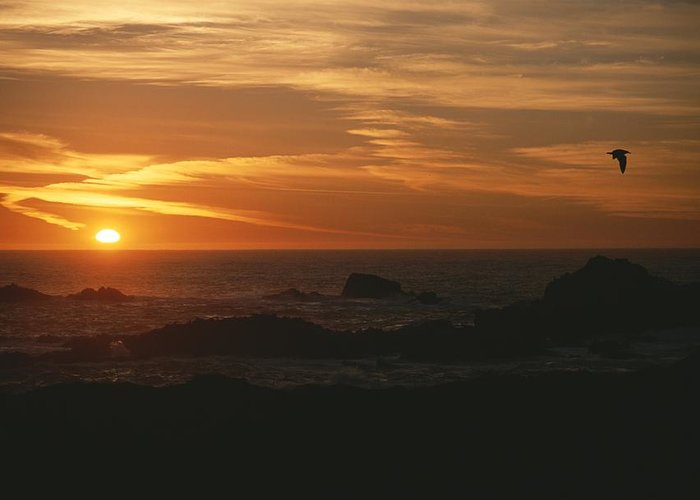 North America Greeting Card featuring the photograph Sunset Over The Pacific Ocean by Todd Gipstein
