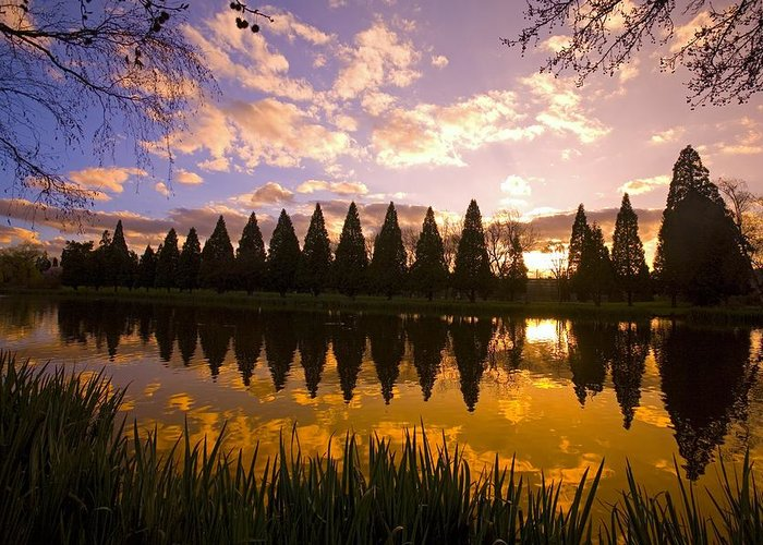 American Greeting Card featuring the photograph Sunset Reflection In A Park Pond by Craig Tuttle