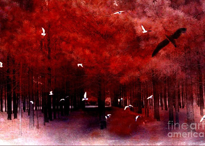 Surreal Fantasy Trees Fine Art Prints Greeting Card featuring the photograph Surreal Fantasy Red Woodlands With Birds Seagull by Kathy Fornal