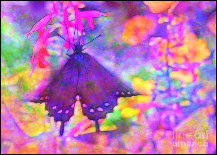 Swallowtail Greeting Card featuring the photograph Swallowtail by Judi Bagwell