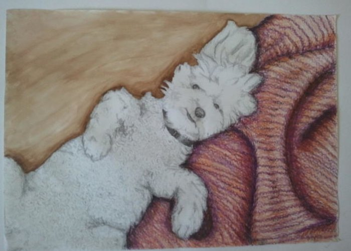 Dog Greeting Card featuring the mixed media Sweepy by Dana Mitchell