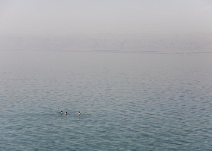 Three People Greeting Card featuring the photograph Swimmers Enjoy The Waters Of The Dead by Taylor S. Kennedy