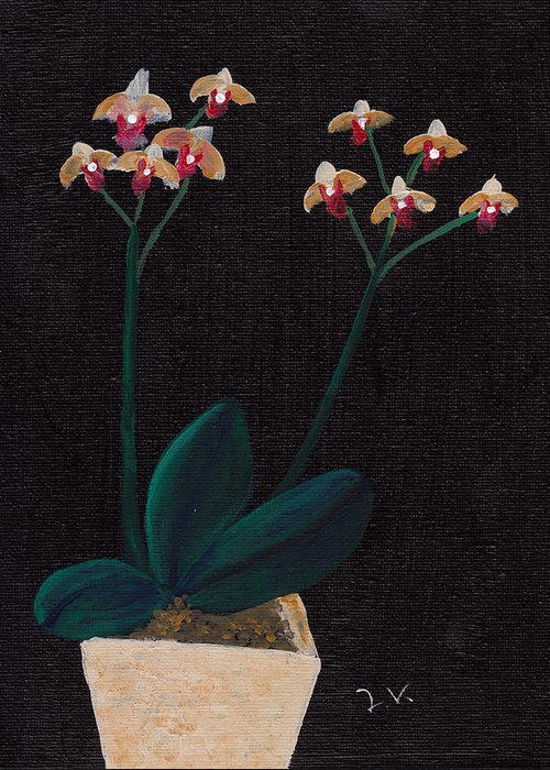 Orchid Greeting Card featuring the painting Table Orchid by M Valeriano