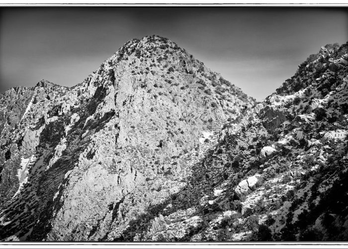 Nature Greeting Card featuring the photograph Taos Mountain 3 by Lisa Spencer