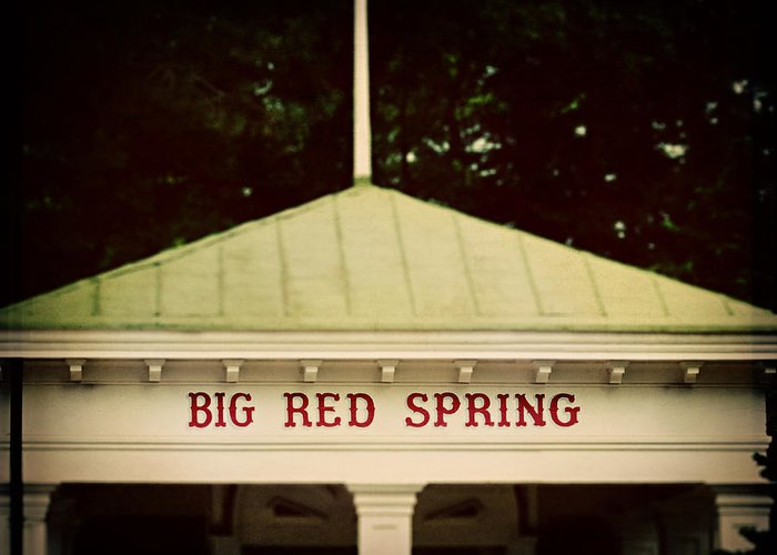 Saratoga Race Course Greeting Card featuring the photograph The Big Red Spring by Lisa Russo