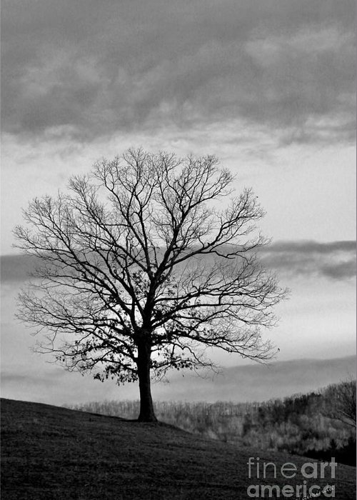 Black And White Photograph Greeting Card featuring the photograph The Coming Storm by Laurinda Bowling