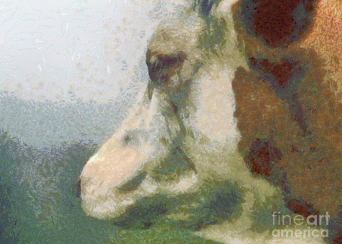 Nature Greeting Card featuring the painting The Cow Portrait by Odon Czintos